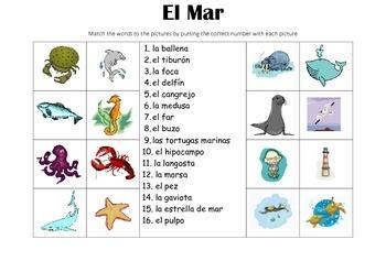 SPANISH - Picture Match - El Mar (the sea)
