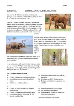 SPANISH READING / LECTURA: TRABAJANDO CON ELEFANTES