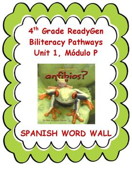 4th Grade SPANISH ReadyGen Biliteracy Pathways Unit 1, Module P Word Wall
