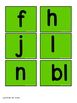 SPECIAL EDUCATION* Word Families Flip Book (O's)
