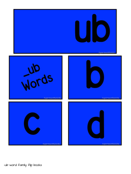 SPECIAL EDUCATION* Word Families Flip Book (U's)