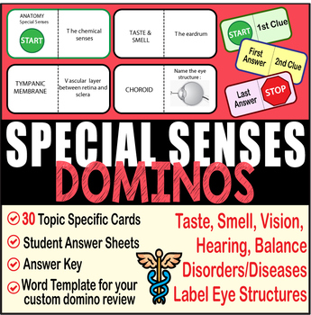 SPECIAL SENSES ~DOMINO REVIEW~ 30 Cards + Answer Sheets+Key- ANATOMY