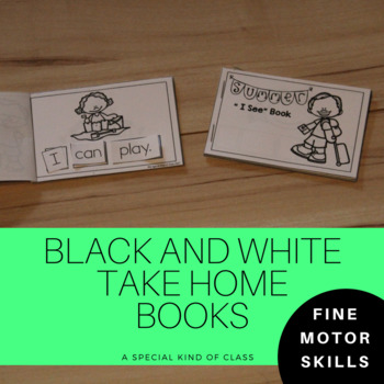 Adapted Books for Special Education Summer