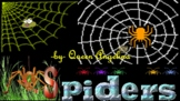 SPIDERS!  --  Cool song and fun facts!