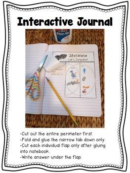 SPIDER Reading Comprehension Foldables Vocabulary Dictionary Skills