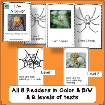 SPIDERS! Non-fiction Beginning Readers for Guided Reading