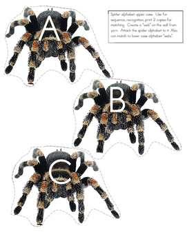 SPIDERS Preschool