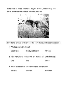 SPRING BIRDS: Bluebirds Informational text + 10 LITERAL COMPREHENSION QUESTIONS
