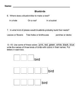 SPRING BIRDS: Bluebirds Informational text + 10 LITERAL COMPREHENSION QUESTIONS
