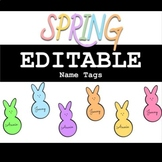 SPRING EDITABLE Name Tags *peep edition* - Great for Bulletin Boards