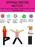 SPRING GROSS MOTOR: Student perform same action as the picture. prek123