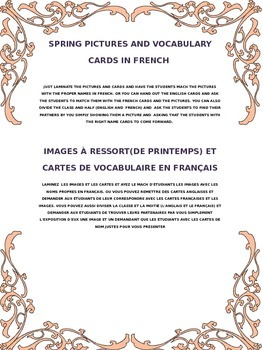SPRING PICTURES AND VOCABULARY CARDS IN FRENCH
