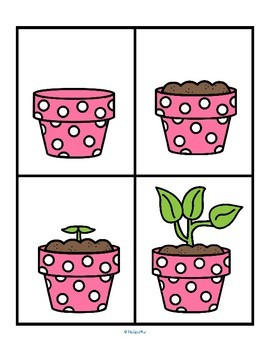 SPRING Sequencing Centers - How to Grow a Plant