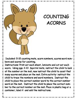 SQUIRREL COUNTING ACORNS