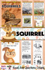 SQUIRREL NONFICTION UNIT (Craft Pattern and Lap book Included)