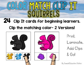 SQUIRRELS  Color Match Clip It {A Beginning Work Task)