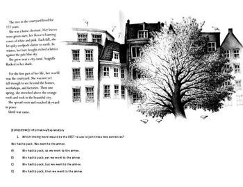 SS & ELA: Questions about the Tree in the Courtyard (Holocaust)