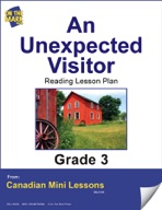 An Unexpected Visitor Reading Lesson Gr. 3