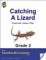 Catching a Lizard Writing and Grammar Lesson Gr. 2