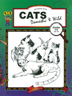 Cats - Domestic and Wild