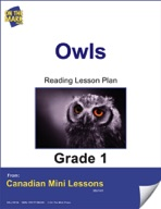Owls Reading Lesson Gr. 1