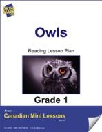 Owls Reading Lesson Gr. 1
