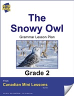 The Snowy Owl Writing and Spelling Lesson Gr. 2