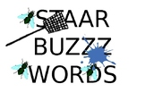 STAAR Buzz Reading 6-8 Academic Vocabulary Game