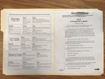 Staar Reading Daily Warm-ups Worksheets & Teaching Resources