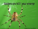 STAAR Main Idea Practice - Spiders