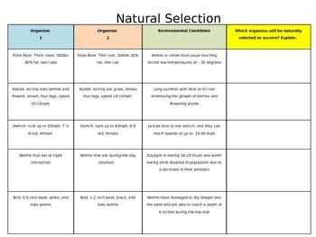 STAAR PREP- Natural Selection