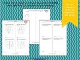 STAAR Practice-Foldable and Skills Algebra I, Category 4,