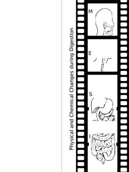 STAAR Prep - Physical and Chemical Changes in Digestion FIlm strip