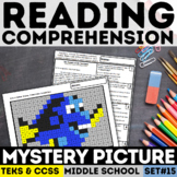 STAAR Reading Mystery Picture - Informational Text