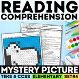 STAAR Reading Mystery Picture - Informational Text Set 4