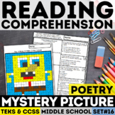 STAAR Reading Mystery Picture - Poetry