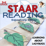 STAAR Reading Review: Expository Edition LEARNING ABOUT LADYBUGS