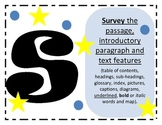 STAAR Reading Strategy Posters for Classroom