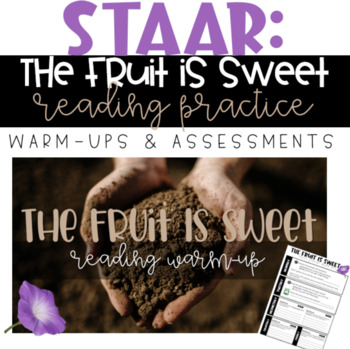 STAAR Reading Warm-up/Assessment - 7th Grade: The Fruit Is Sweet