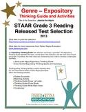 STAAR Release Analysis & Activities: Jessica the Hippo, Grade 3