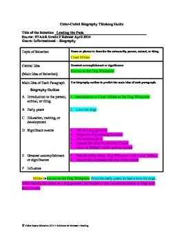 STAAR Release Analysis & Activities: Leading the Pack, Grade 3