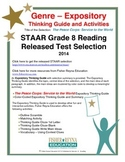 STAAR Release Analysis & Activities: The Peace Corps Servi