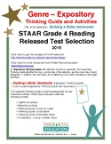 STAAR Released Analysis & Activities: Building a Better Sandcastle, Grade 4