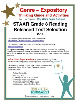 STAAR Released Analysis & Activities: One Giant Paper Airplane, Grade 3