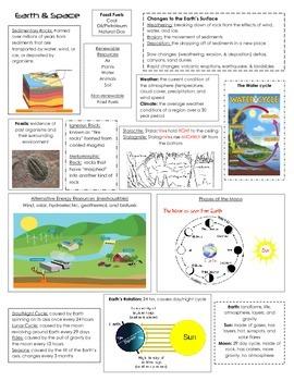 STAAR Science Review