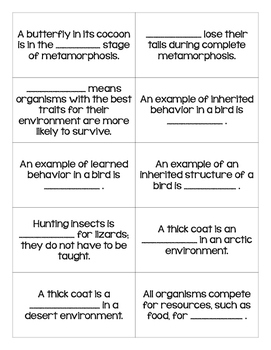 STAAR Science Vocabulary Bingo: Functions of Life TEKS