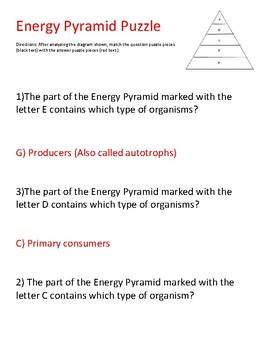 STAAR puzzle: Flow of energy through energy pyramid
