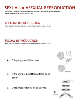 STAAR puzzle: Sexual vs. Asexual reproduction