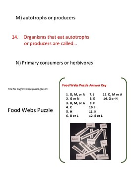 STAAR puzzle: food webs and flow of energy