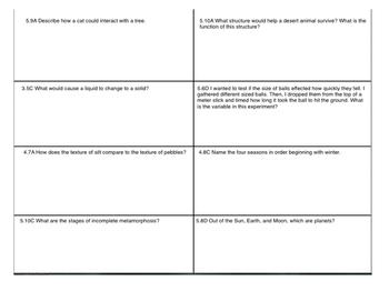 STAAR review sheet eleven